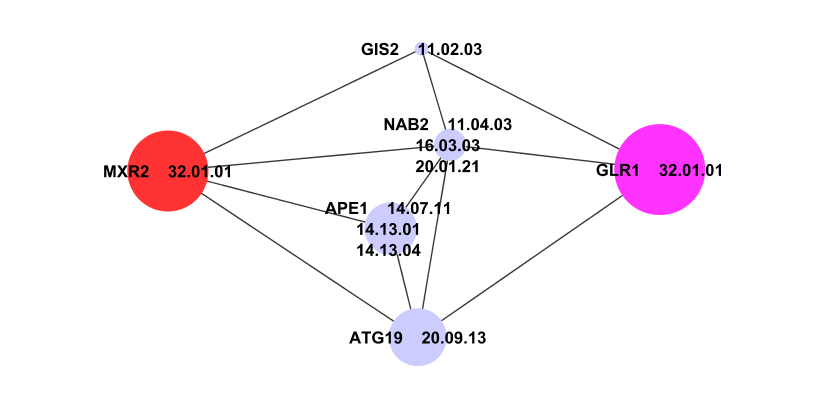 A Subgraph of PPI network